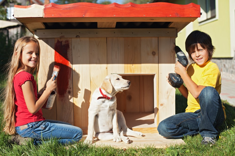 Tips for Building a Dog Kennel