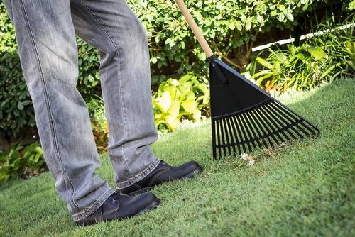 Clean up your yard and footpaths for spring