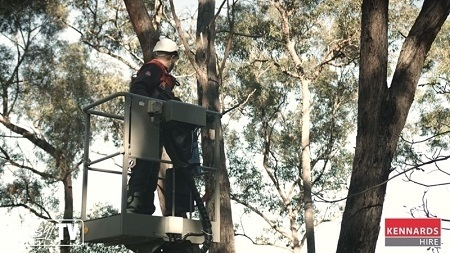 The cherry picker controls are easy to use so you can position yourself safely next to the tree.