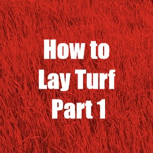 How to lay turf part 1