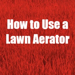 Hoe to use a lawn aerator